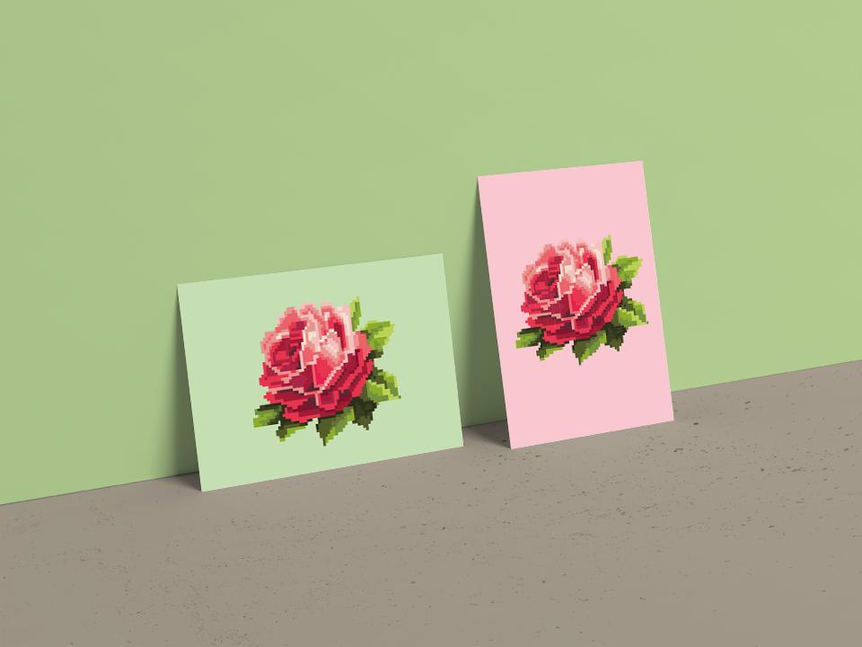 hippe ansichtkaarten met roos